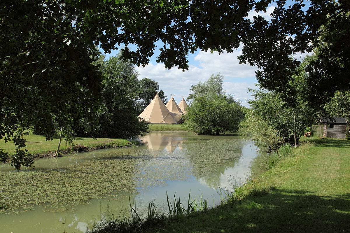 Rookery Meadow